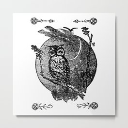 Owl in the Oak Metal Print