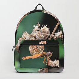 Fairies are Real Backpack
