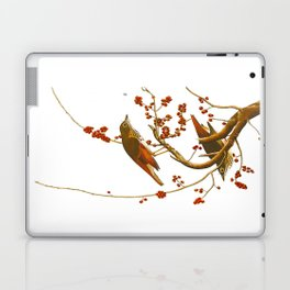 Hermit Thrush Bird Laptop & iPad Skin