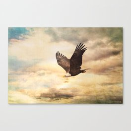 Early Evening Flight Canvas Print