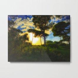 Rota Spain trees 2 Metal Print