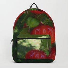Fruta Pitangas Brasileiras !! Backpack