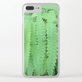 Fern Symmetry Clear iPhone Case