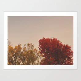In the Fall Art Print