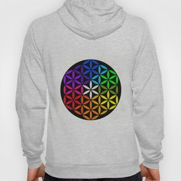Secret flower of life Hoody