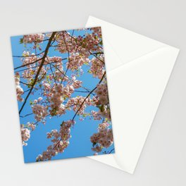 Cherry Blossoms and Blue Sky at Kew Gardens 2019 Stationery Cards