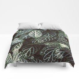 Botanical Gardens Zebra Leaf #398 Comforters