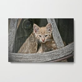 Little Charlie Metal Print
