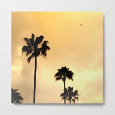 California Minimalism Metal Print