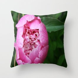 Peony planted by Grandpa Throw Pillow