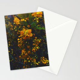 Yellow Butterfly Bush Stationery Cards