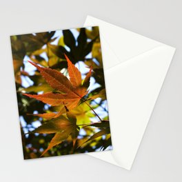Japanese Maple Leaves Stationery Cards