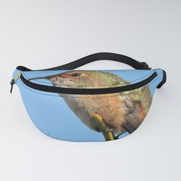 Grasping the Point Fanny Pack