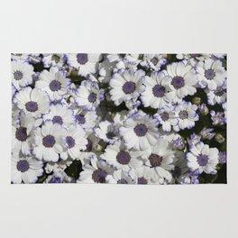 Cineraria White and Purple Rug