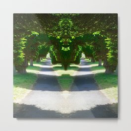 Two Paths Diverge Metal Print