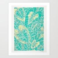 Schismatoglottis Calyptrata – Mint Palette Art Print