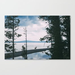 BEYOND THE PINES Canvas Print