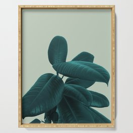 Ficus Elastica #8 #GreenLily #decor #art #society6 Serving Tray
