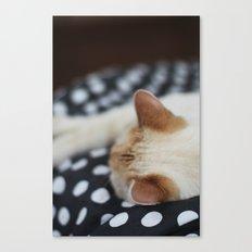 Dotty Kitty Canvas Print
