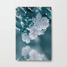 Lilacs blue 092 Metal Print