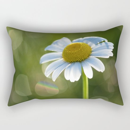 Daisy after rain at backlight Rectangular Pillow