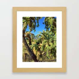 Spikes and Spines Framed Art Print