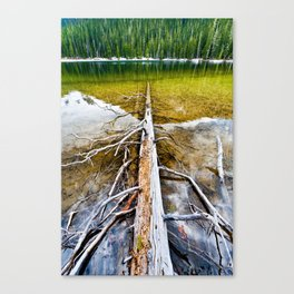 Resting on the lake Canvas Print