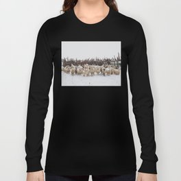 Snowy Sheep Stare Long Sleeve T-shirt