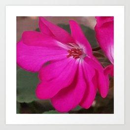 Just Bloom Art Print