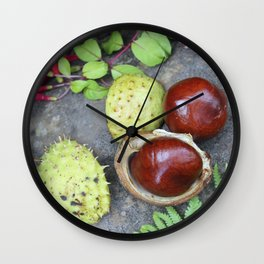 Conkers -horse chestnuts Wall Clock