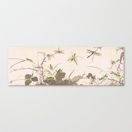 Insects and Grasses Canvas Print