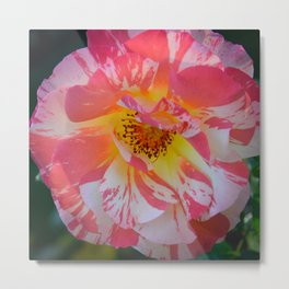 Carnival Rose by Teresa Thompson Metal Print