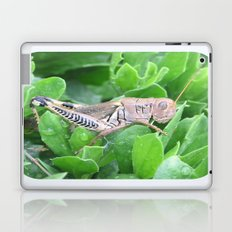 beauty in the mundane - grasshopper Laptop & iPad Skin
