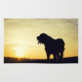 Brown Roan Italian Spinone Dog Sunset Rug