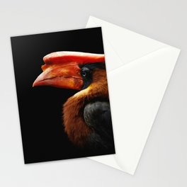 Portrait bird on a black background. Bird Rufous hornbill Stationery Cards