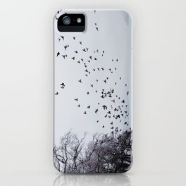 Birds iPhone Case