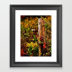 Fence Post Fall Framed Art Print