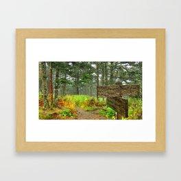 Beneath Clingman's Dome Framed Art Print