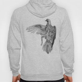 Pigeon Dissection Hoody