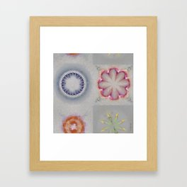 Pailful Disposition Flower  ID:16165-040203-89270 Framed Art Print