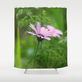 Pink Daisy Photo Shower Curtain