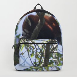 Just Hanging Around Backpack