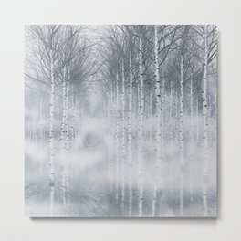 Aspen trees forest Metal Print