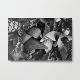 San Francisco Potpourri Metal Print