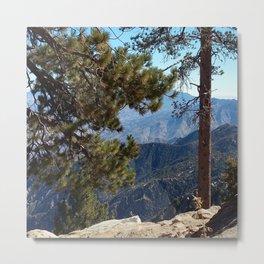 Nature Impression USA 1 Metal Print