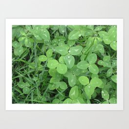 Green Fresh Art Print