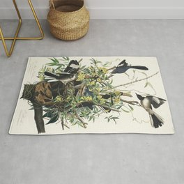 Mocking Bird from Birds of America (1827) by John James Audubon etched by William Home Lizars Rug