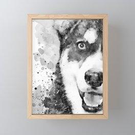 Black And White Half Faced Husky Dog Framed Mini Art Print