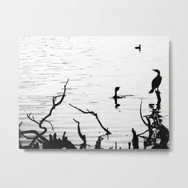 One on a perch Metal Print