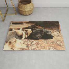 Cats and dogs sleeping on the carpet Rug